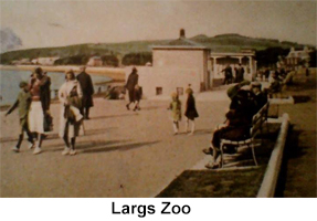 largs zoo icons
